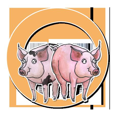Die Schweine Pünktchen und Pupsi