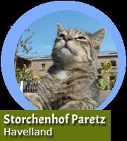 Urlaub auf dem Storchenhof Paretz