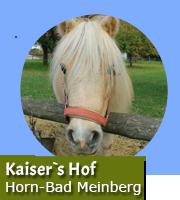 Kaiser`s Hof