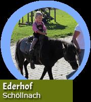 Kostenloses Ponyreiten am Ederhof